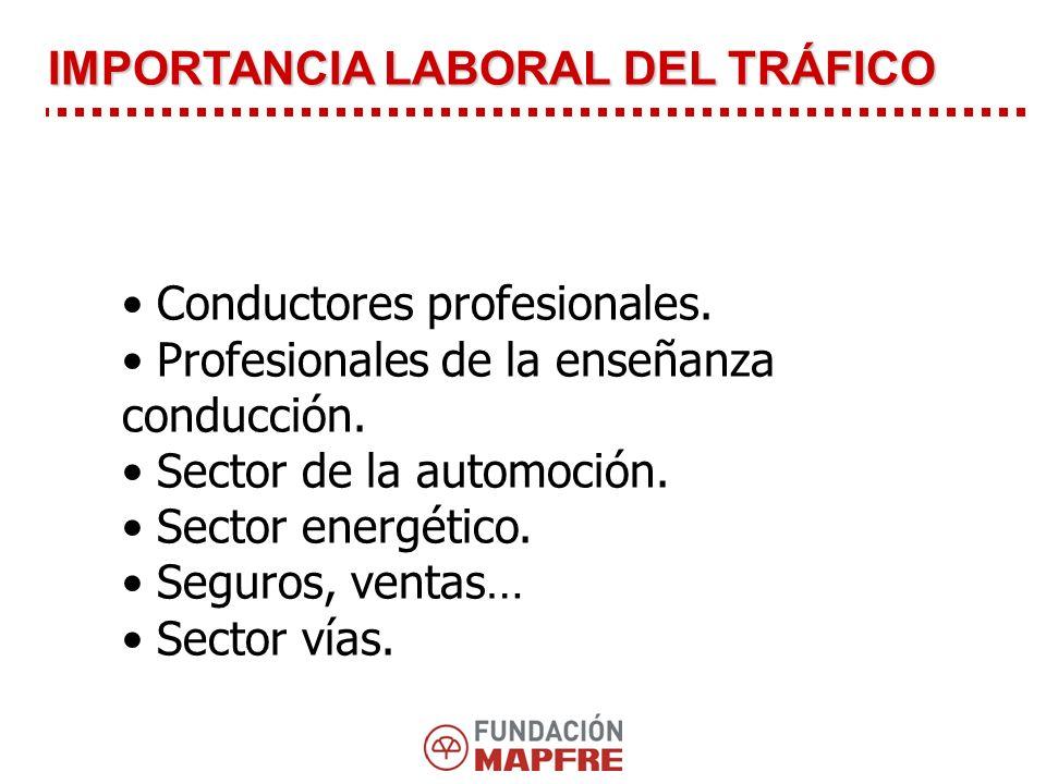Conductores profesionales.Profesionales de la enseñanza conducción.