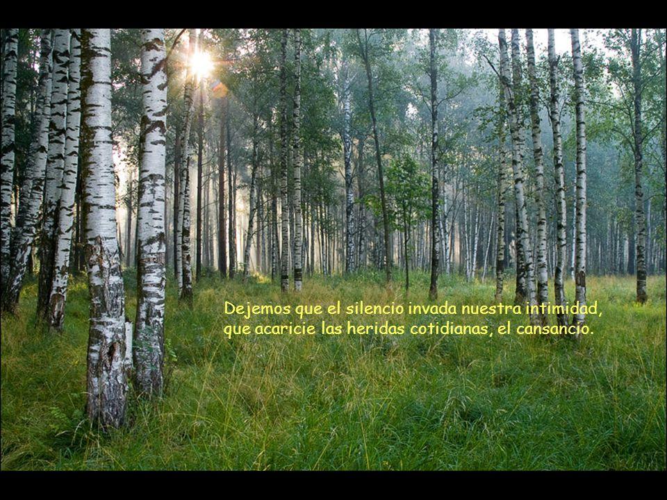 Dejemos que el silencio invada nuestra intimidad, que acaricie las heridas cotidianas, el cansancio.