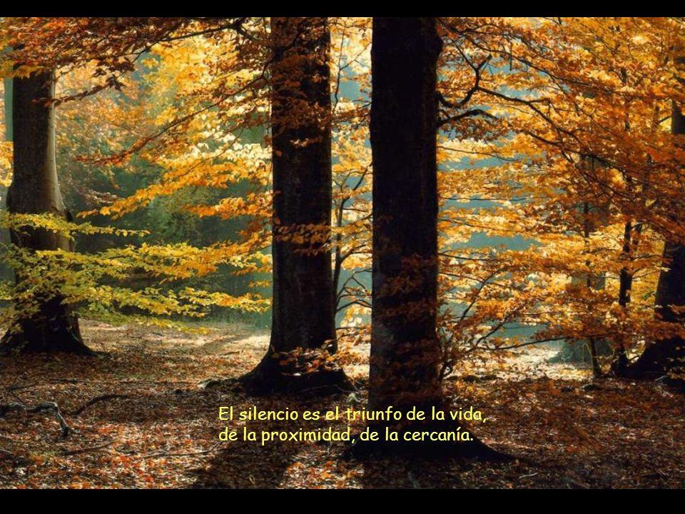 El silencio es el triunfo de la vida, de la proximidad, de la cercanía.