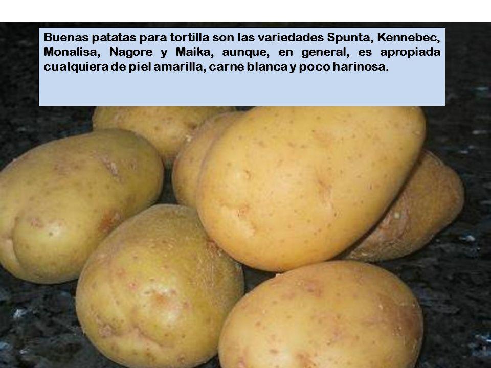 Las patatas, una vez fritas en abundante aceite de oliva, se deben dejar a remojo en el huevo batido, al menos durante 10 minutos, para que se empapen