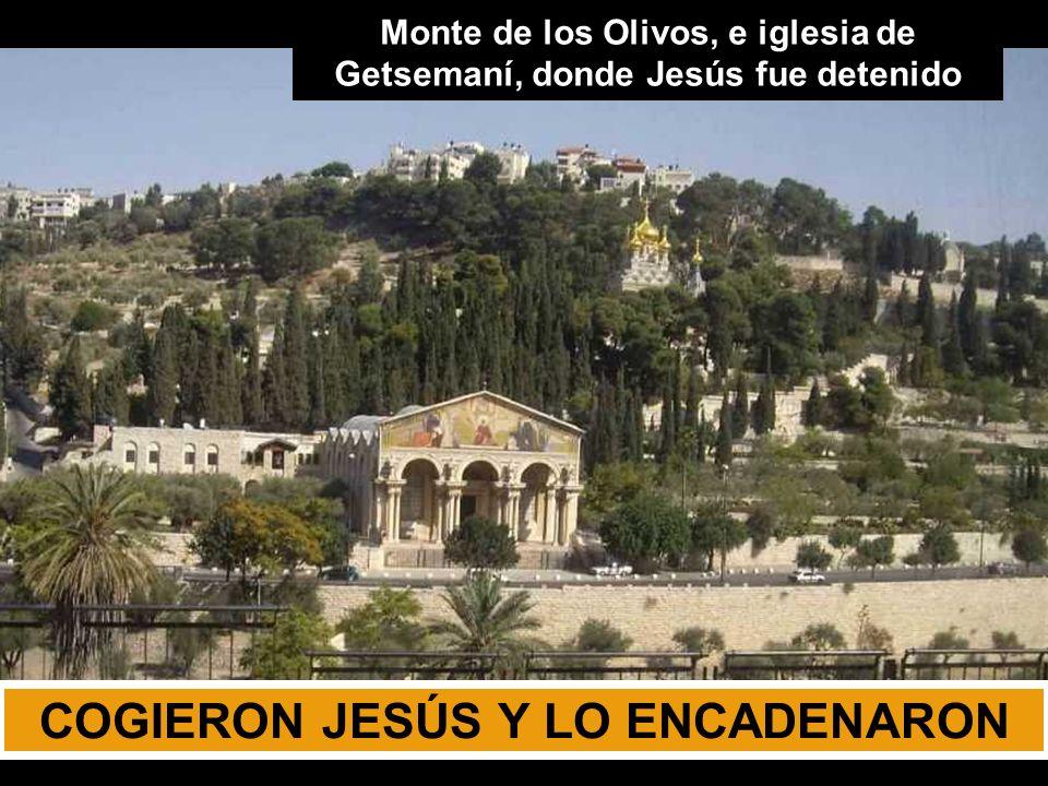 EVANGELIO DE NUESTRO SEÑOR JESUCRISTO SEGÚN SAN JUAN Acompañemos Jesús CAMINO del CALVARIO