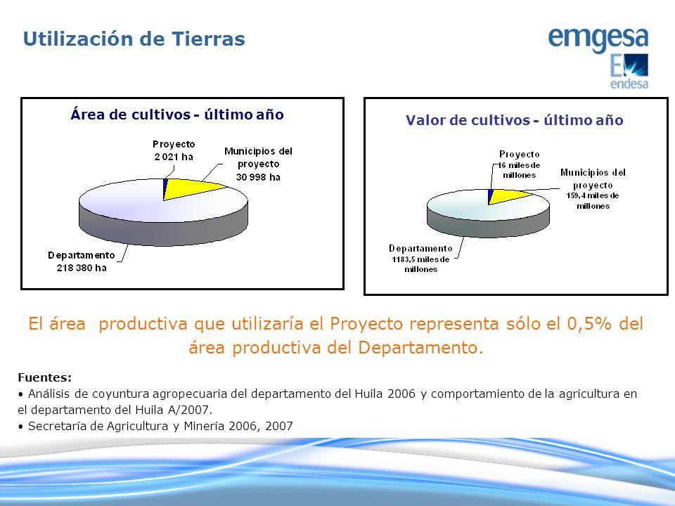 Área de cultivos - último año Valor de cultivos - último año Fuentes: Análisis de coyuntura agropecuaria del departamento del Huila 2006 y comportamie