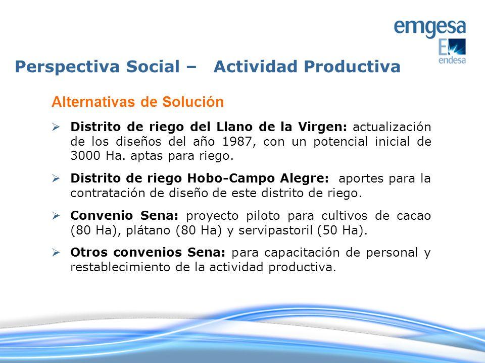 Distrito de riego del Llano de la Virgen: actualización de los diseños del año 1987, con un potencial inicial de 3000 Ha. aptas para riego. Distrito d