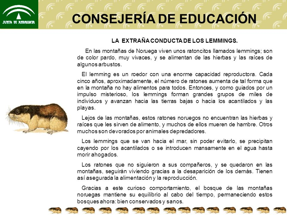 CONSEJERÍA DE EDUCACIÓN PREGUNTA 1.