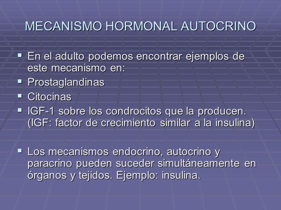 Sustancias hormonales particulares (Ej: Óxido Nítrico) Se forma en los tejidos a partir de la L-arginina, por la acción de la enzima NO – sintetiza (NOS).