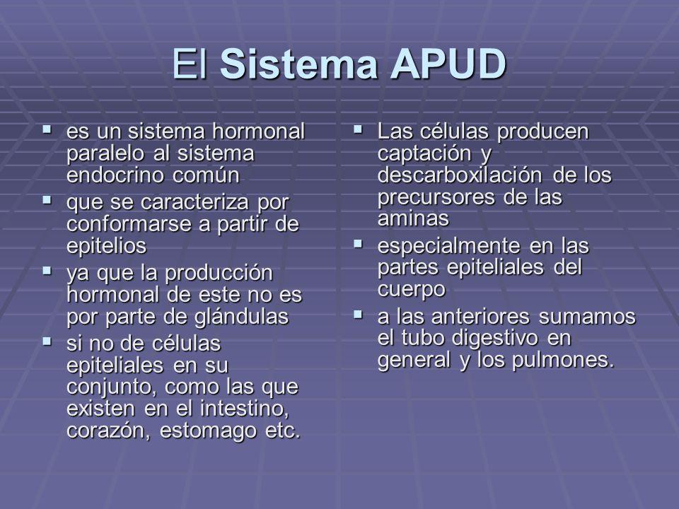 Células del sistema APUD Células de numerosos órganos (glándulas endocrinas, tubo digestivo, etc.) Células de numerosos órganos (glándulas endocrinas, tubo digestivo, etc.) con algunos caracteres comunes que permiten agruparlas en un verdadero sistema, el sistema A.P.U.D.