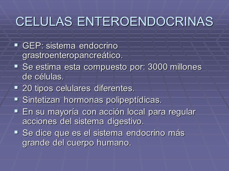 Ubicación Epitelio superficial y glandular de las siguientes membranas mucosas: Epitelio superficial y glandular de las siguientes membranas mucosas: Estómago (regiones corpofúndica y pilórica).