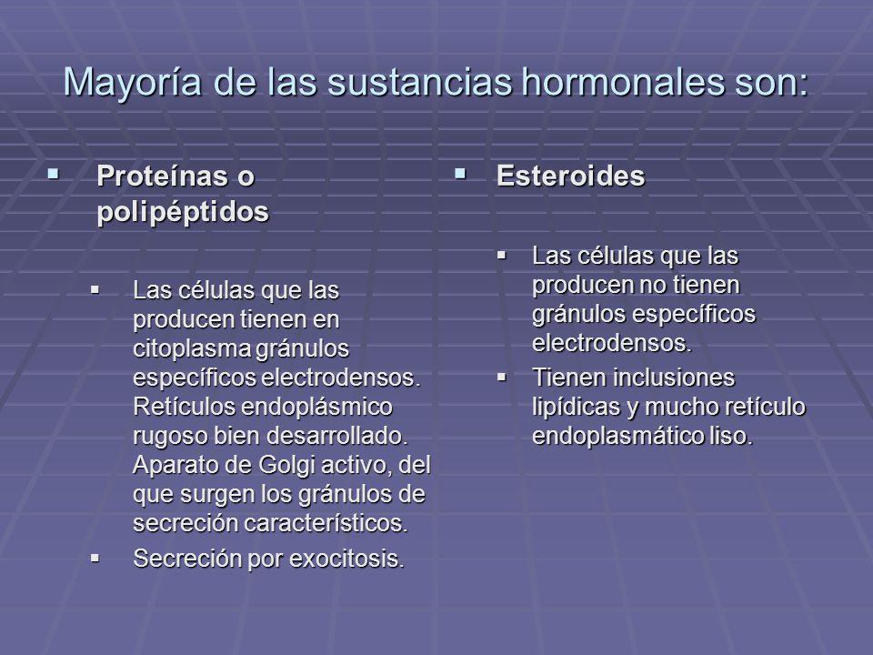 MECANISMO HORMONAL PARACRINO Ocurre cuando la hormona alcanza sus dianas celulares cercanas por medio de difusión en el líquido extracelular del tejido conjuntivo y el tejido muscular.