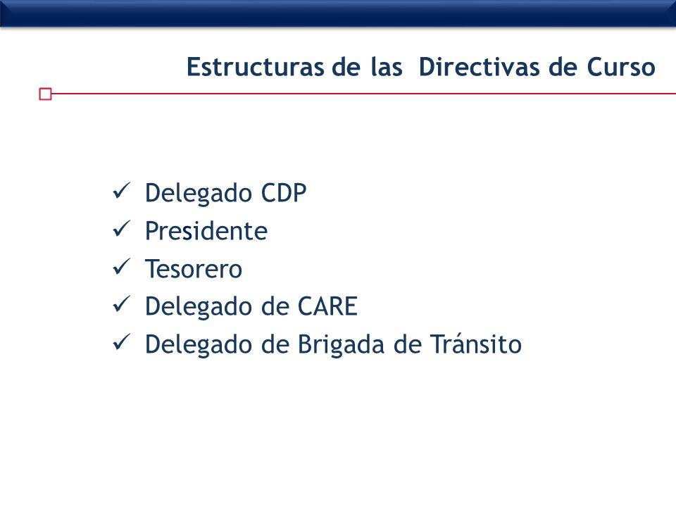 Delegado CDP Presidente Tesorero Delegado de CARE Delegado de Brigada de Tránsito Estructuras de las Directivas de Curso