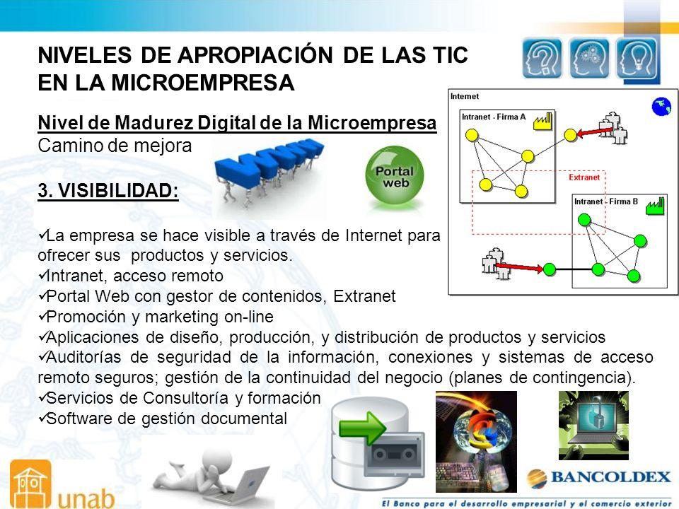 NIVELES DE APROPIACIÓN DE LAS TIC EN LA MICROEMPRESA Nivel de Madurez Digital de la Microempresa Camino de mejora 3.
