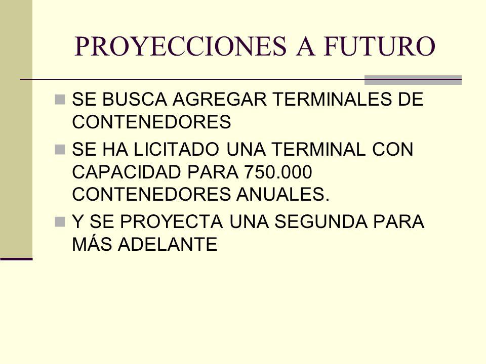 PROYECCIONES A FUTURO SE BUSCA AGREGAR TERMINALES DE CONTENEDORES SE HA LICITADO UNA TERMINAL CON CAPACIDAD PARA 750.000 CONTENEDORES ANUALES.