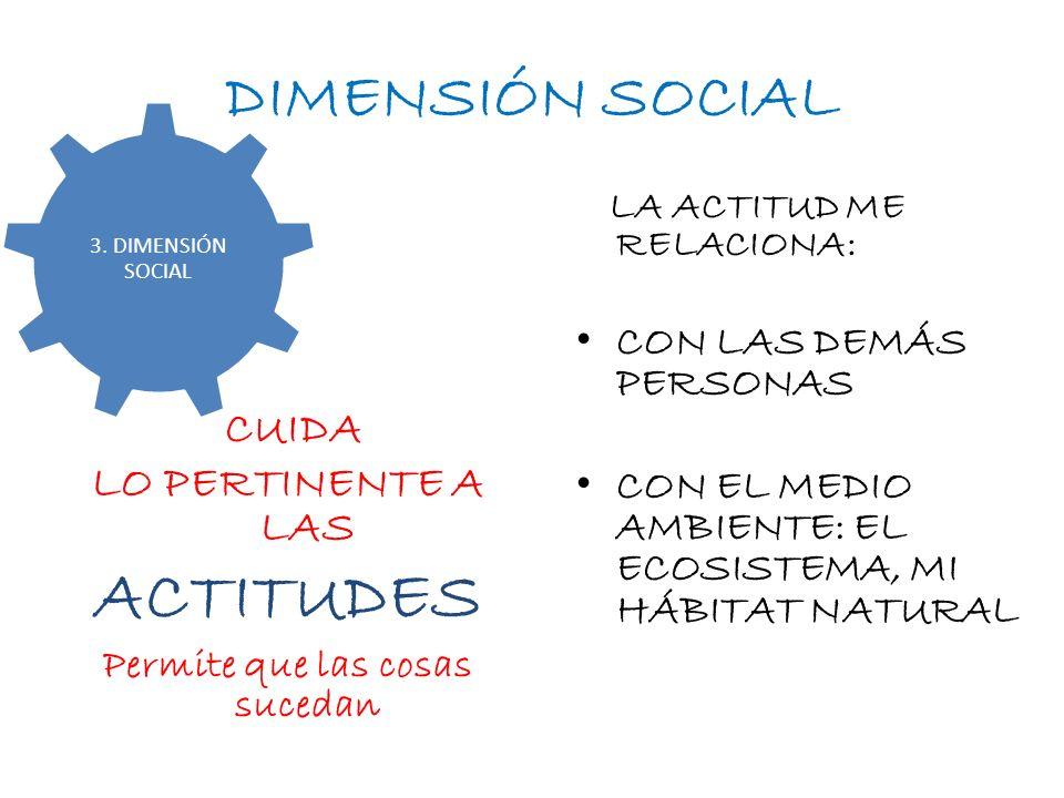 DIMENSIÓN SOCIAL CUIDA LO PERTINENTE A LAS ACTITUDES Permite que las cosas sucedan LA ACTITUD ME RELACIONA: CON LAS DEMÁS PERSONAS CON EL MEDIO AMBIEN