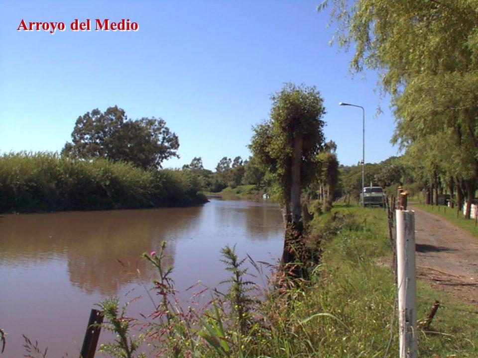 Arroyo del Medio
