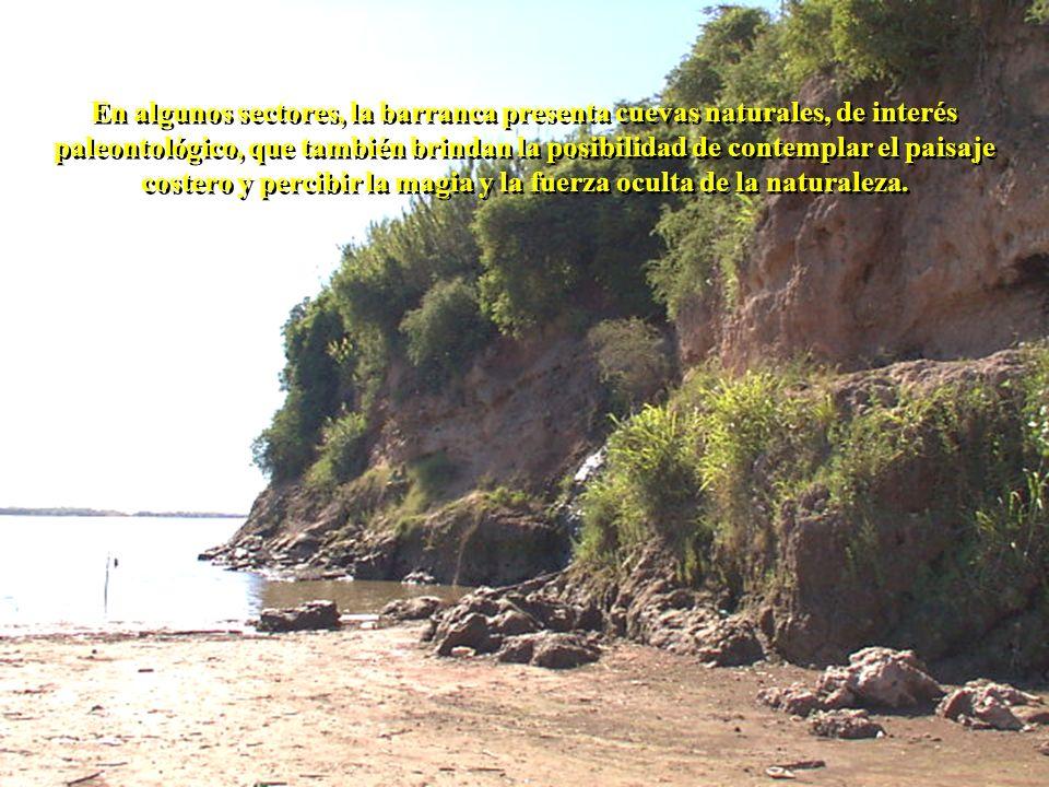 En algunos sectores, la barranca presenta cuevas naturales, de interés paleontológico, que también brindan la posibilidad de contemplar el paisaje cos