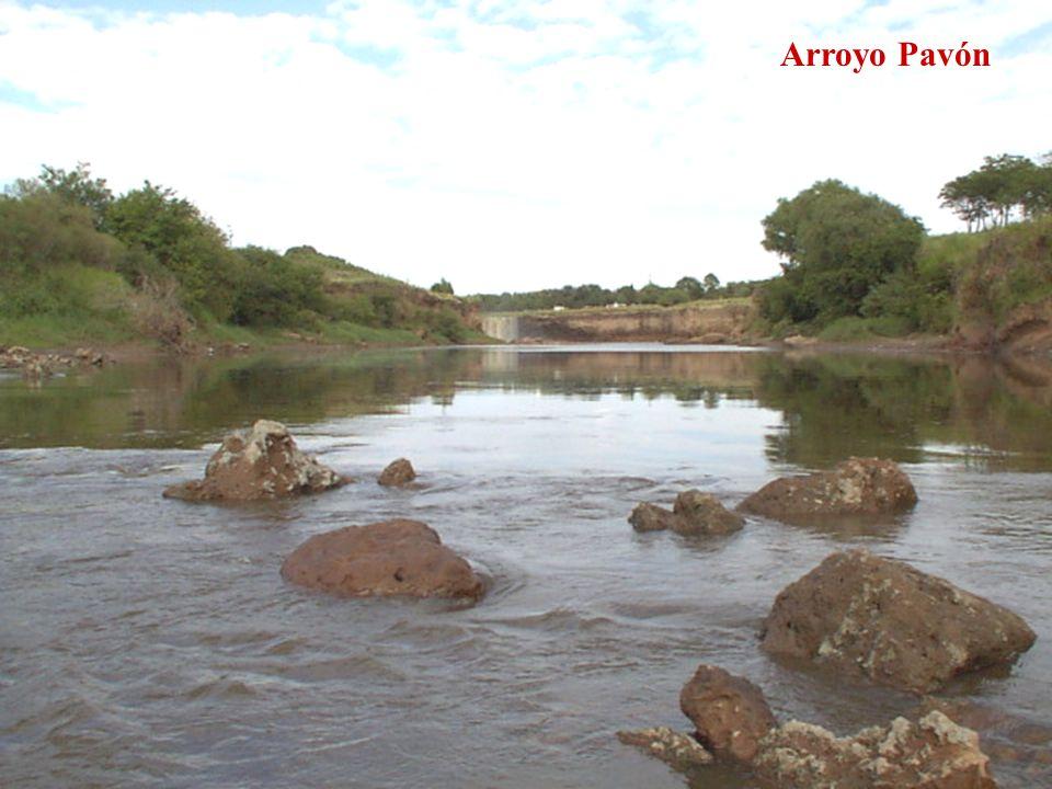Arroyo Pavón