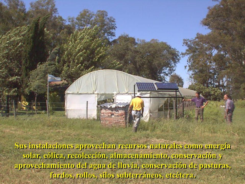 Sus instalaciones aprovechan recursos naturales como energía solar, eólica, recolección, almacenamiento, conservación y aprovechamiento del agua de ll