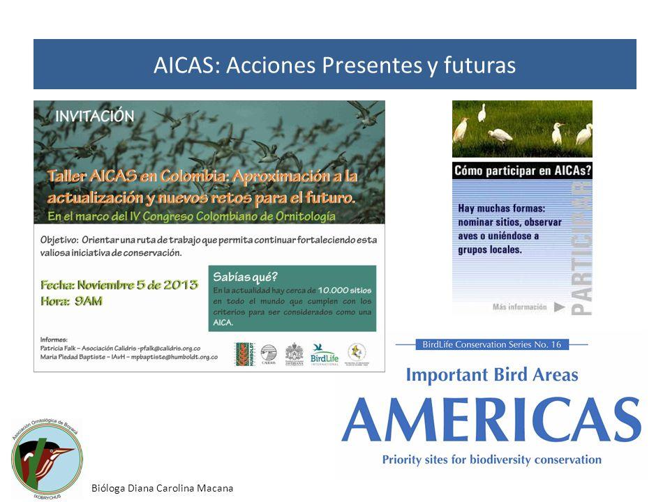 AICAS: Acciones Presentes y futuras Bióloga Diana Carolina Macana