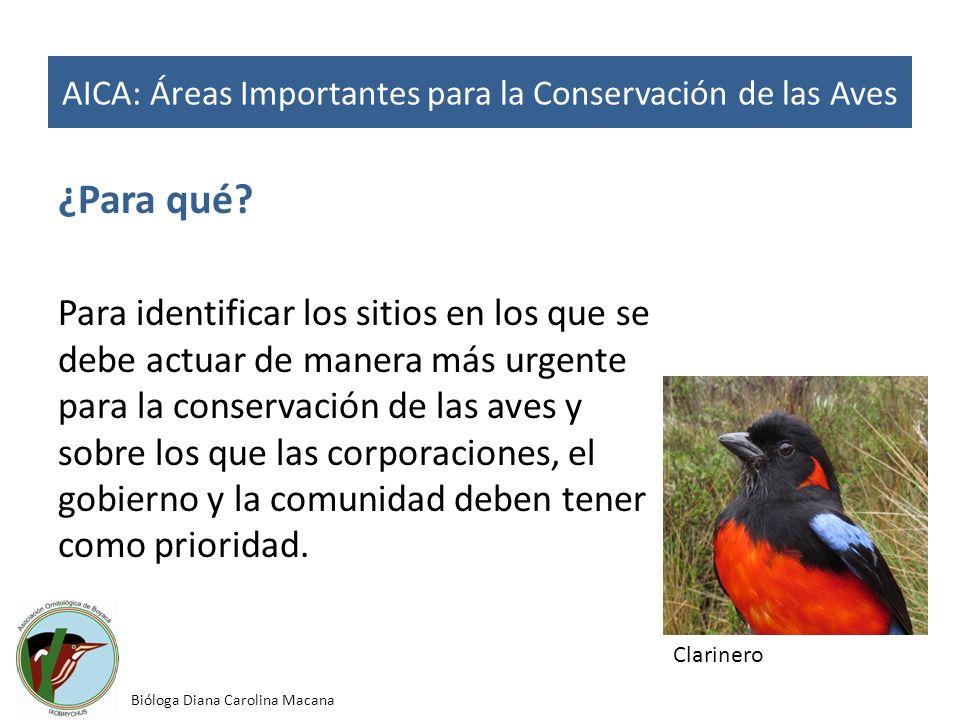 ¿Para qué? Para identificar los sitios en los que se debe actuar de manera más urgente para la conservación de las aves y sobre los que las corporacio