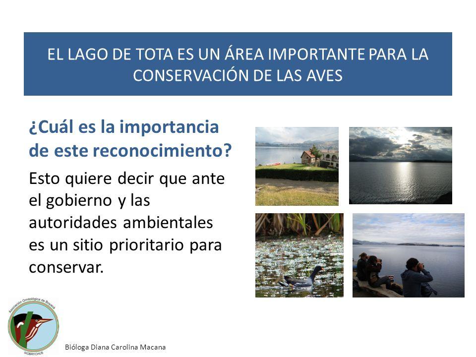 ¿Cuál es la importancia de este reconocimiento? Esto quiere decir que ante el gobierno y las autoridades ambientales es un sitio prioritario para cons