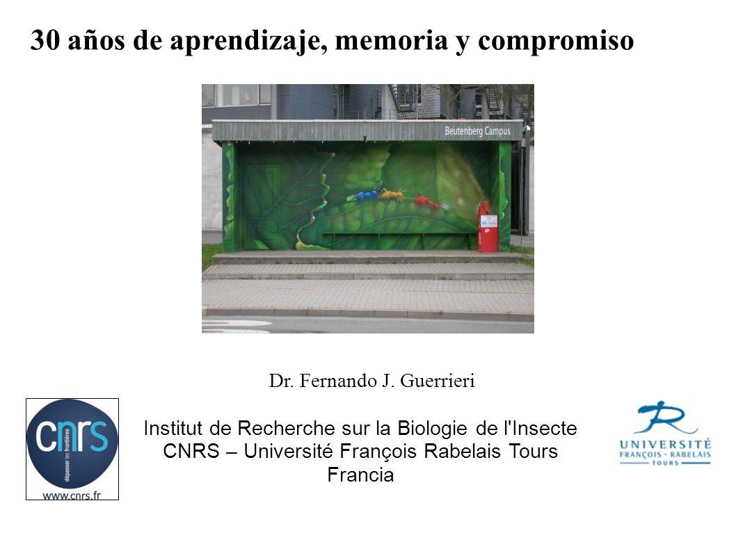 Institut de Recherche sur la Biologie de l'Insecte CNRS – Université François Rabelais Tours Francia Dr. Fernando J. Guerrieri 30 años de aprendizaje,