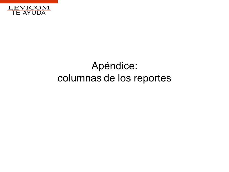 Apéndice: columnas de los reportes