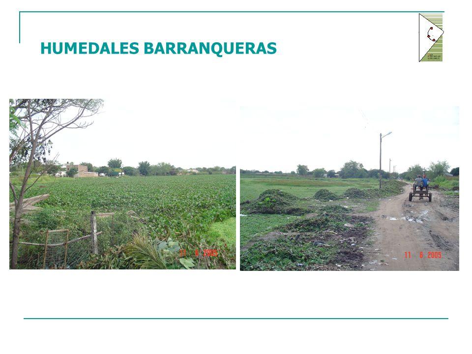 HUMEDALES BARRANQUERAS