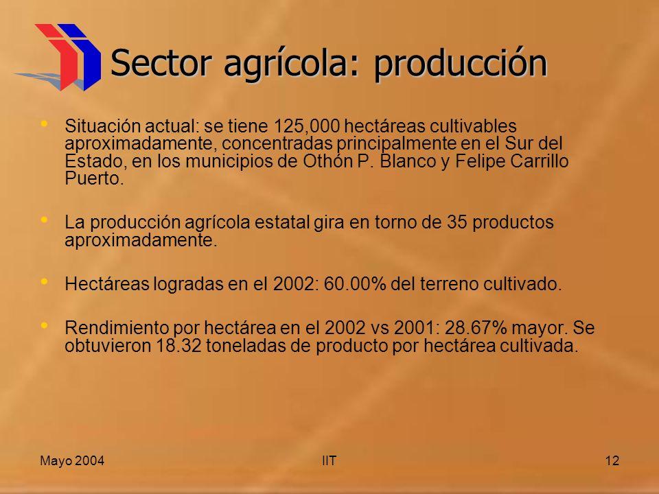 Mayo 2004IIT12 Sector agrícola: producción Situación actual: se tiene 125,000 hectáreas cultivables aproximadamente, concentradas principalmente en el Sur del Estado, en los municipios de Othón P.