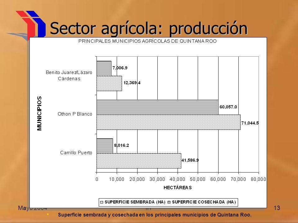 Mayo 2004IIT13 Sector agrícola: producción Superficie sembrada y cosechada en los principales municipios de Quintana Roo.