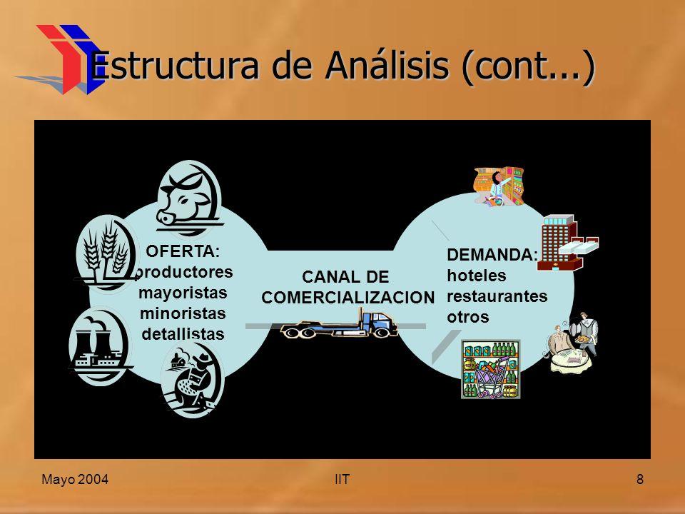 Mayo 2004IIT8 Estructura de Análisis (cont...) OFERTA: productores mayoristas minoristas detallistas CANAL DE COMERCIALIZACION CANAL DE COMERCIALIZACION DEMANDA: hoteles restaurantes otros