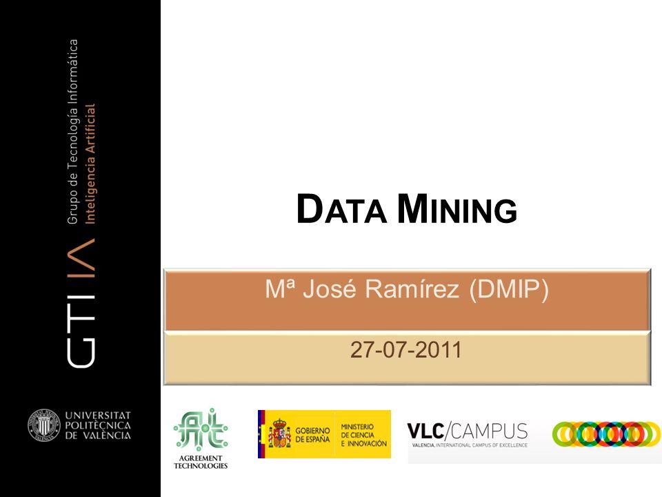 D ATA M INING Mª José Ramírez (DMIP) 27-07-2011