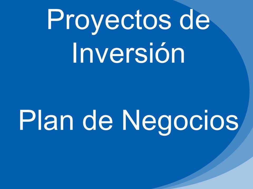 Proyectos de Inversión Plan de Negocios