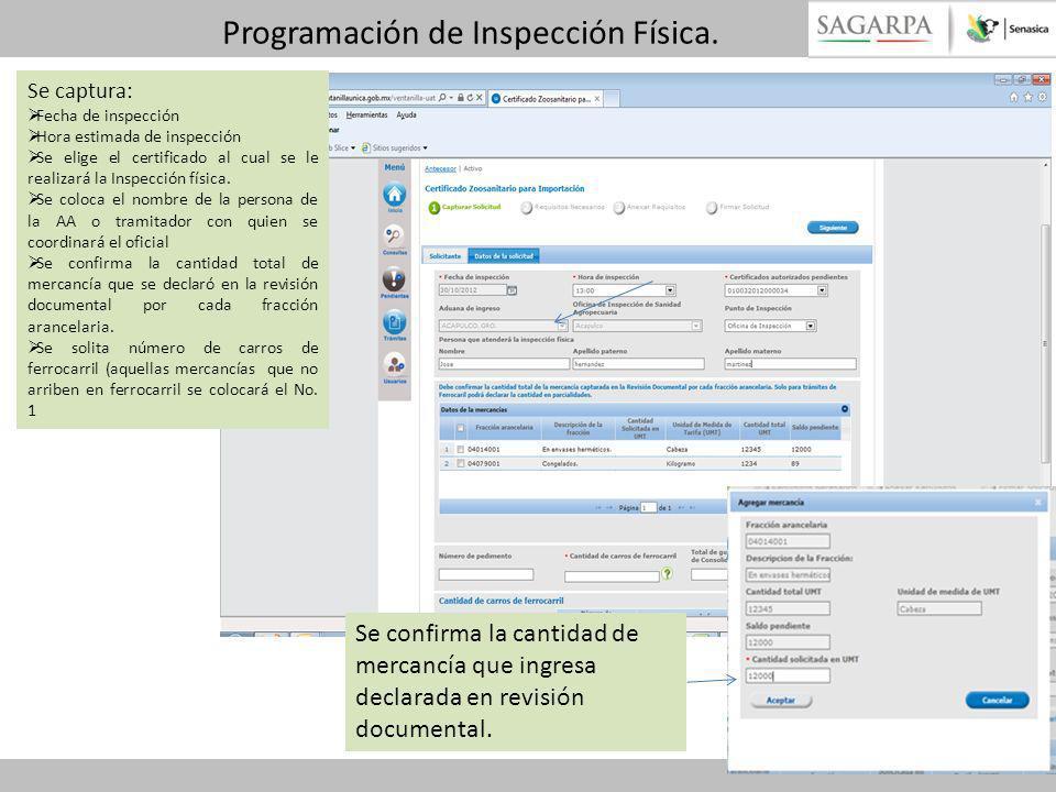Programación de Inspección Física. Se captura: Fecha de inspección Hora estimada de inspección Se elige el certificado al cual se le realizará la Insp