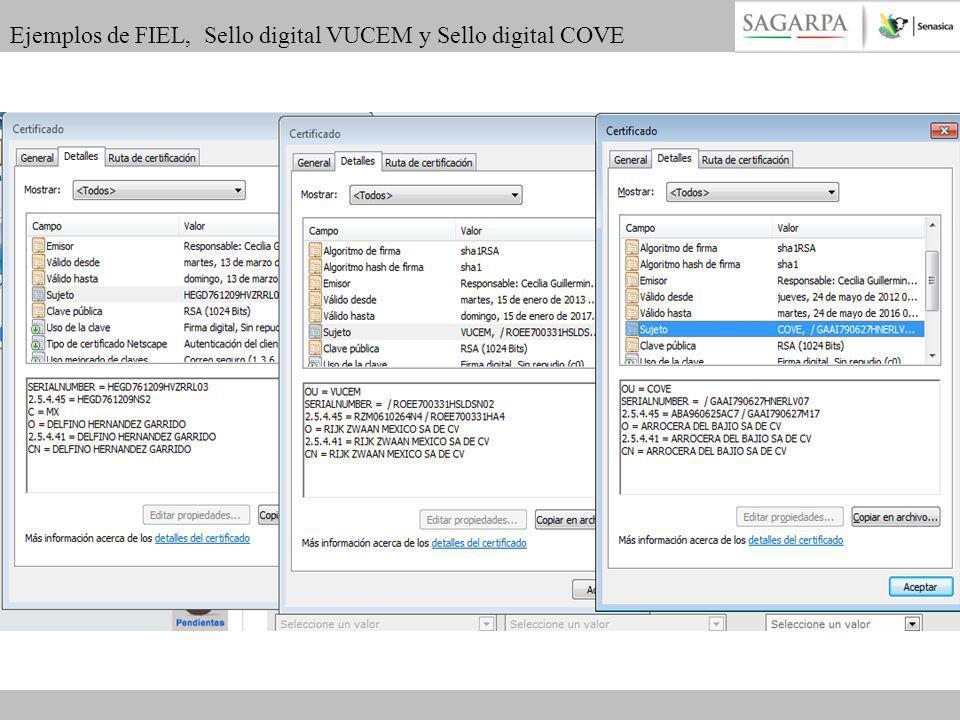 Ejemplos de FIEL, Sello digital VUCEM y Sello digital COVE