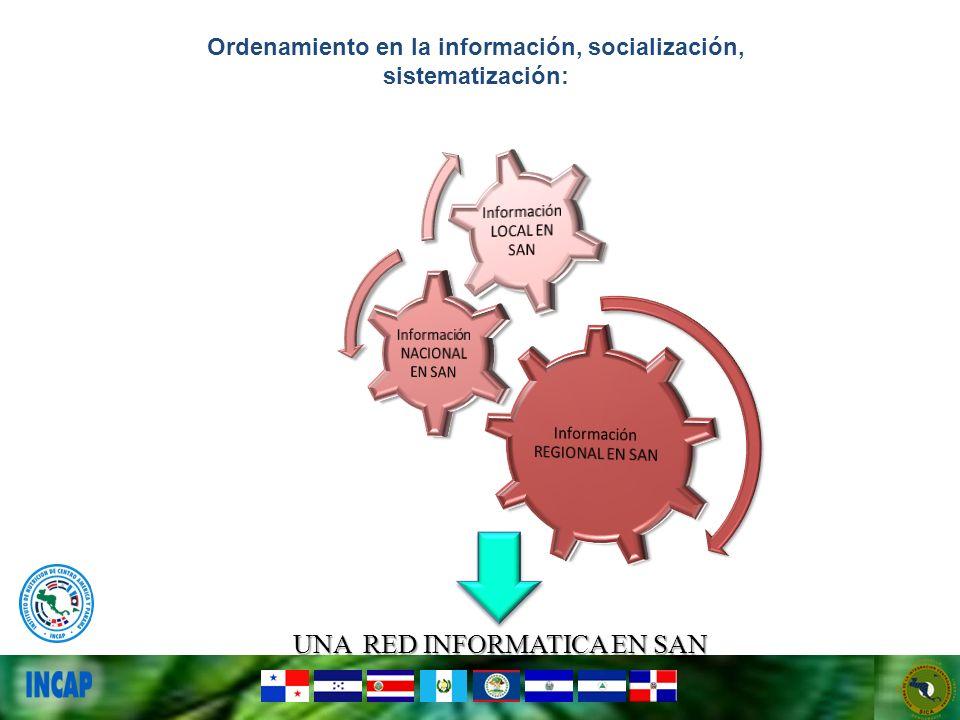 UNA RED INFORMATICA EN SAN Ordenamiento en la información, socialización, sistematización: