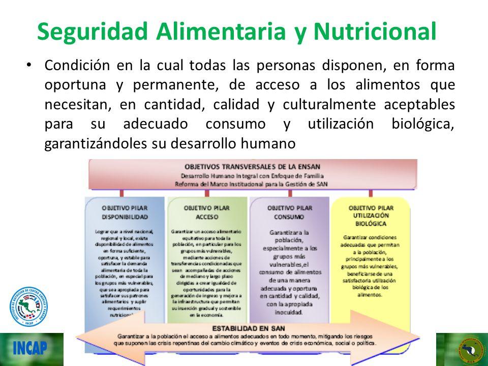 Seguridad Alimentaria y Nutricional Condición en la cual todas las personas disponen, en forma oportuna y permanente, de acceso a los alimentos que ne
