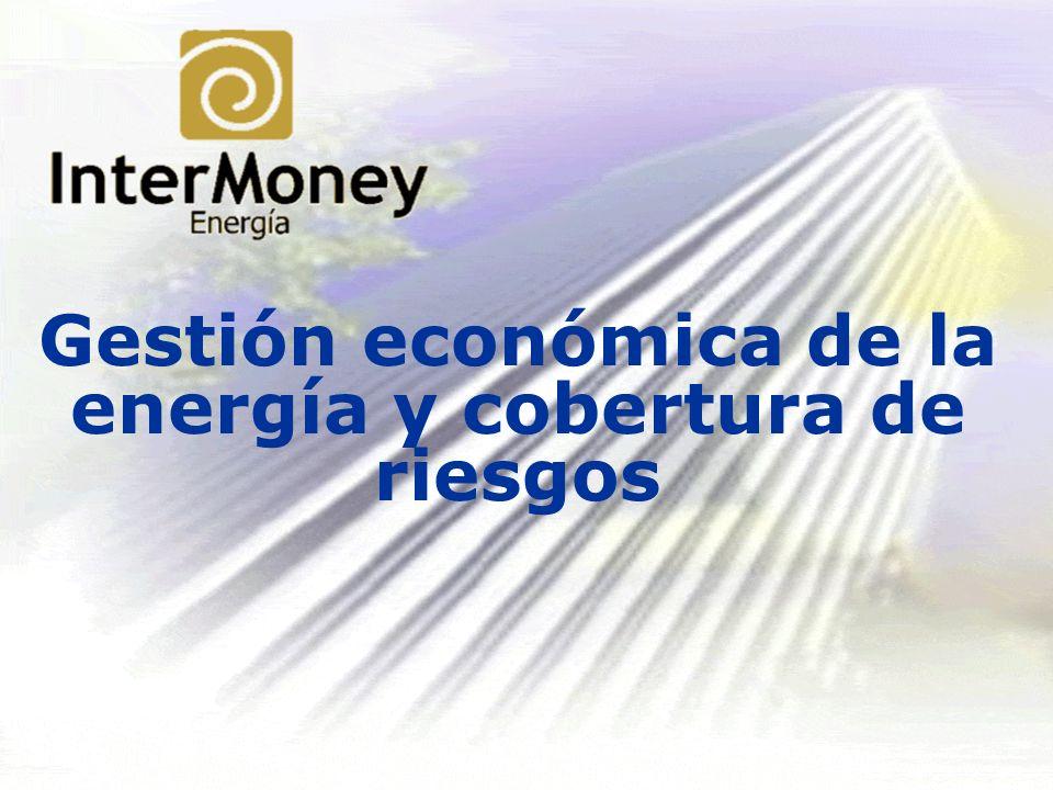 Gestión económica de la energía y cobertura de riesgos