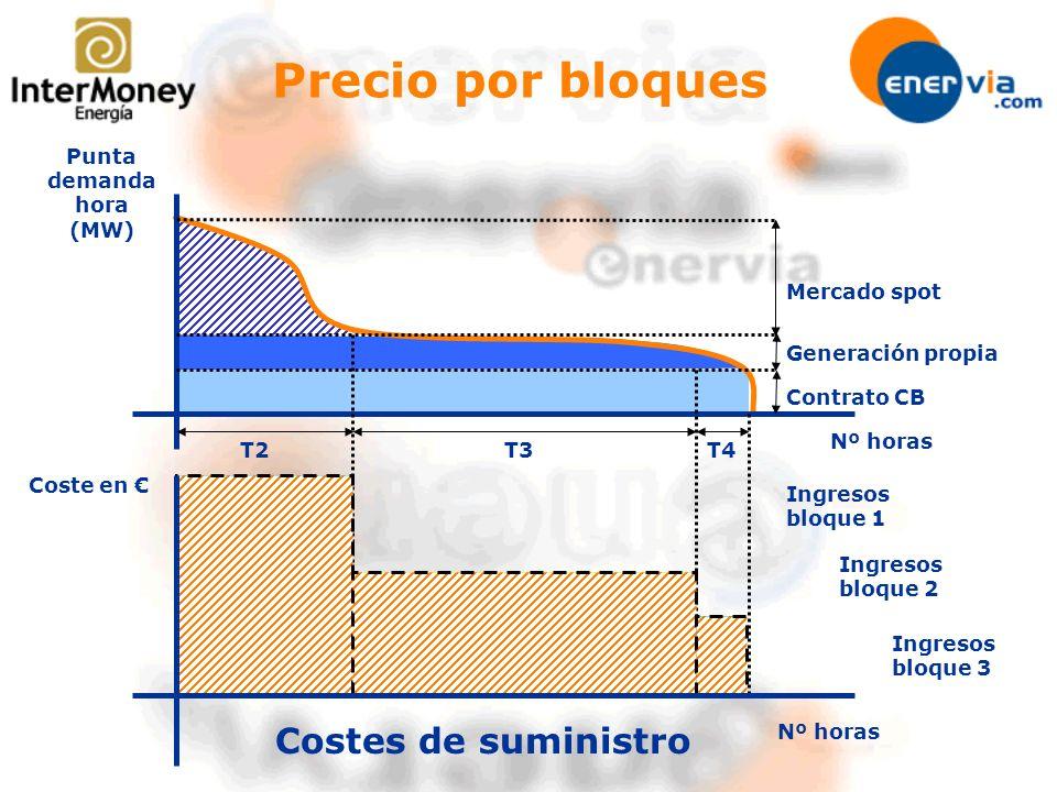 Nº horas Punta demanda hora (MW) Mercado spot Generación propia Contrato CB Coste en T3T4T2 Costes de suministro Precio por bloques Ingresos bloque 1