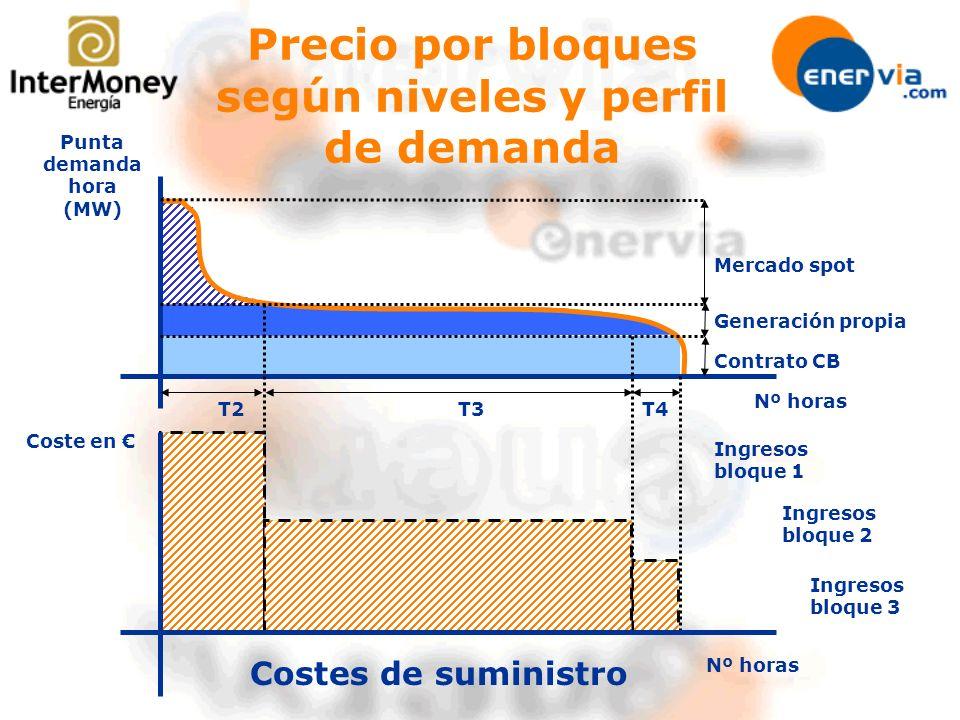 Nº horas Punta demanda hora (MW) Mercado spot Generación propia Contrato CB Coste en T3T4T2 Costes de suministro Precio por bloques según niveles y pe