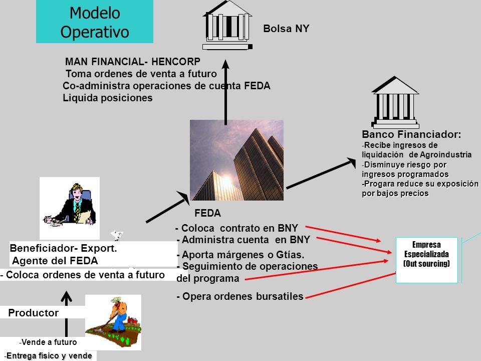Beneficiador- Export. Agente del FEDA - Coloca ordenes de venta a futuro FEDA - Coloca contrato en BNY - Administra cuenta en BNY - Aporta márgenes o