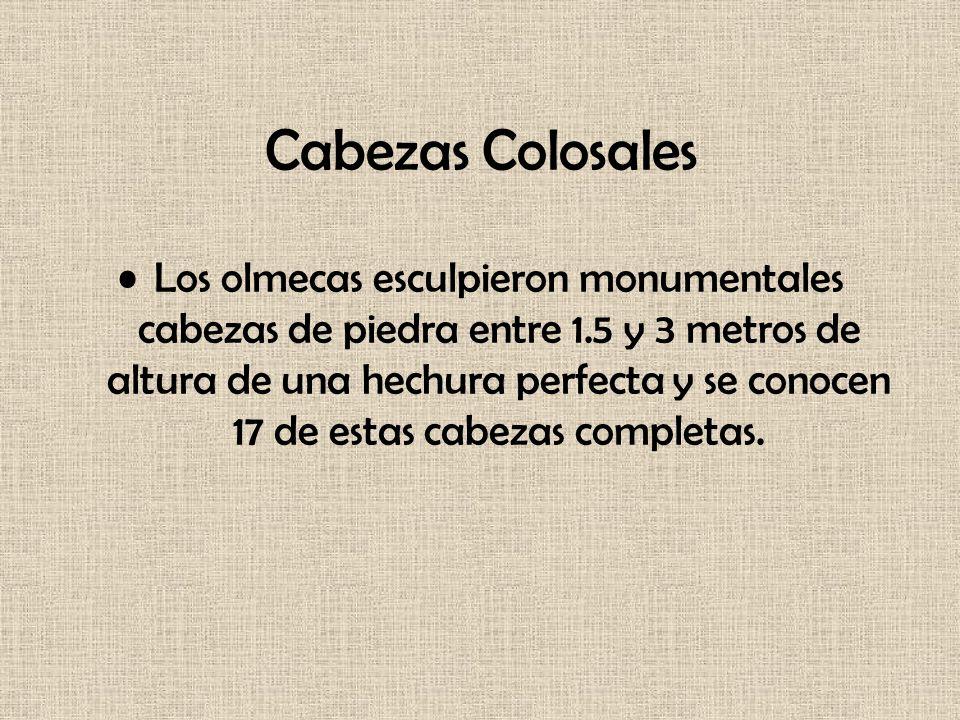 Cabezas Colosales Los olmecas esculpieron monumentales cabezas de piedra entre 1.5 y 3 metros de altura de una hechura perfecta y se conocen 17 de est