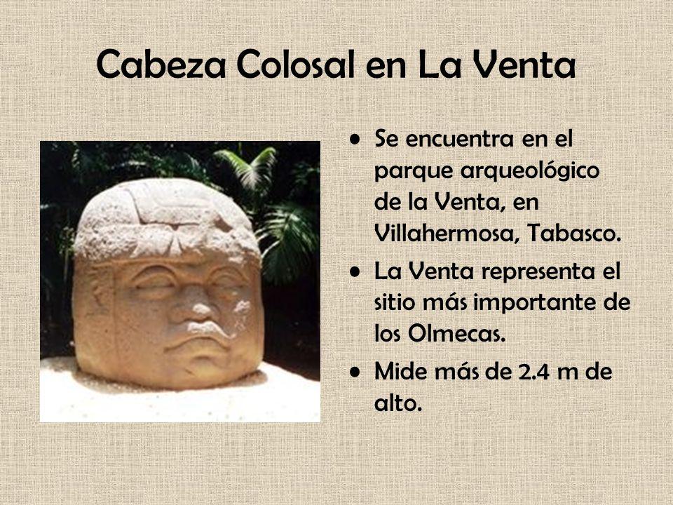 Cabeza Colosal en La Venta Se encuentra en el parque arqueológico de la Venta, en Villahermosa, Tabasco. La Venta representa el sitio más importante d
