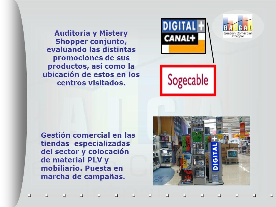 Auditoria y Mistery Shopper conjunto, evaluando las distintas promociones de sus productos, así como la ubicación de estos en los centros visitados. G