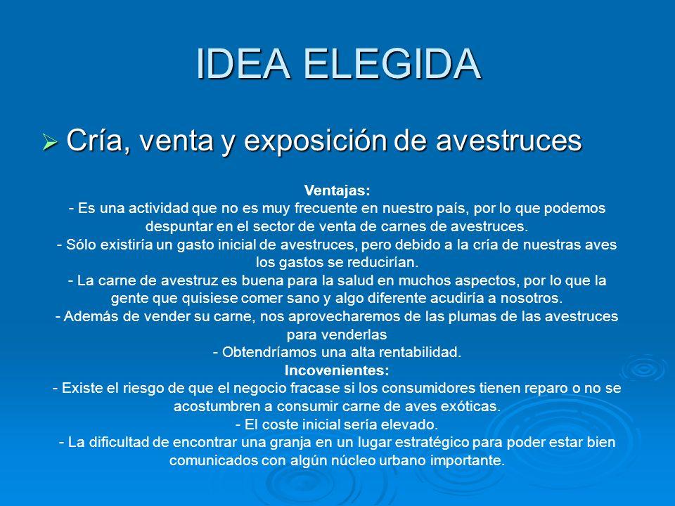 IDEA ELEGIDA Cría, venta y exposición de avestruces Cría, venta y exposición de avestruces Ventajas: - Es una actividad que no es muy frecuente en nue