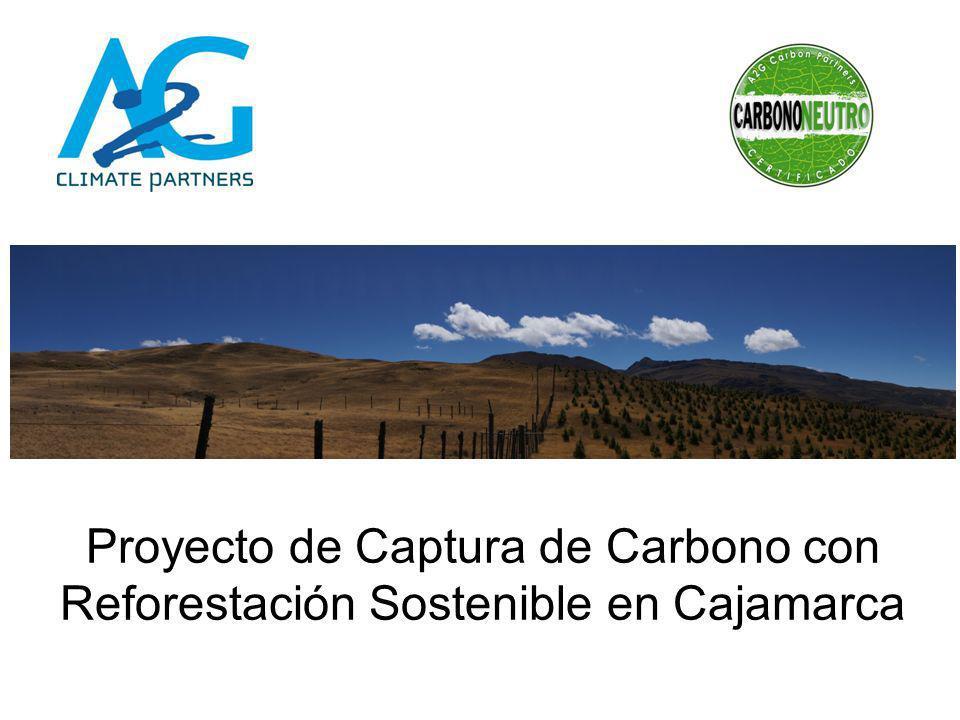 Proyecto de Captura de Carbono con Reforestación Sostenible en Cajamarca
