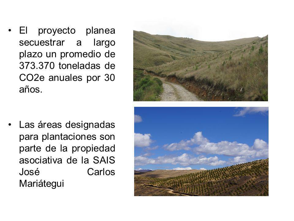 El proyecto planea secuestrar a largo plazo un promedio de 373.370 toneladas de CO2e anuales por 30 años. Las áreas designadas para plantaciones son p