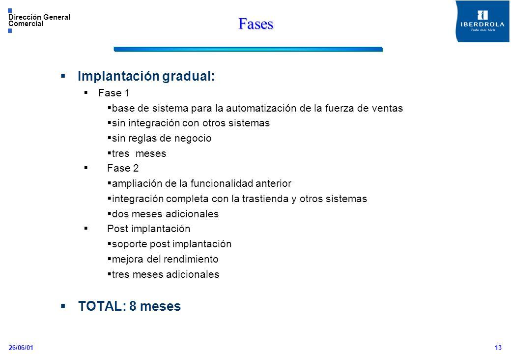 26/06/01 Dirección General Comercial 13 Fases Implantación gradual: Fase 1 base de sistema para la automatización de la fuerza de ventas sin integraci