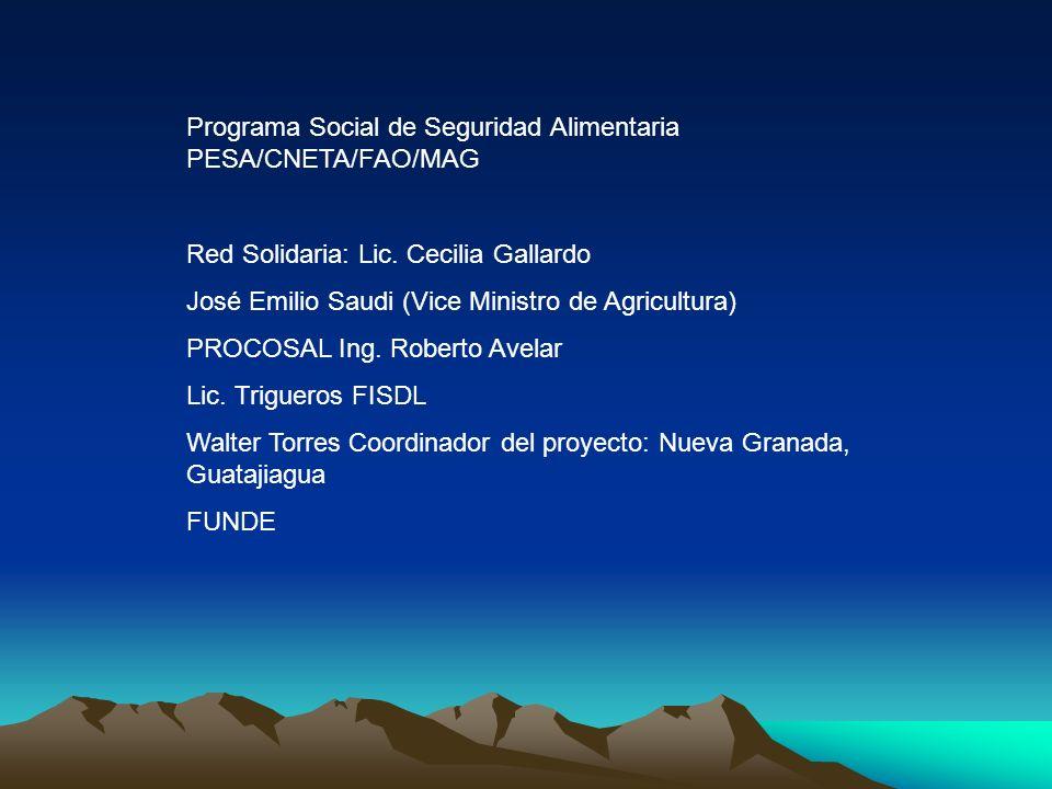 Programa Social de Seguridad Alimentaria PESA/CNETA/FAO/MAG Red Solidaria: Lic. Cecilia Gallardo José Emilio Saudi (Vice Ministro de Agricultura) PROC