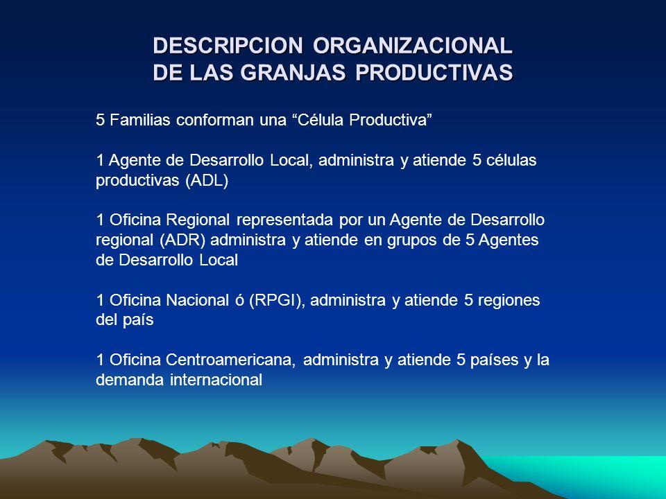 DESCRIPCION ORGANIZACIONAL DE LAS GRANJAS PRODUCTIVAS 5 Familias conforman una Célula Productiva 1 Agente de Desarrollo Local, administra y atiende 5