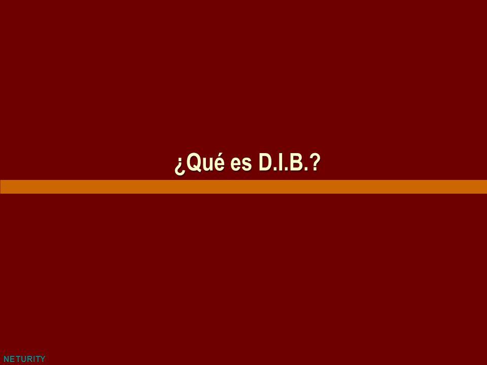 NETURITY ¿Qué es D.I.B.?