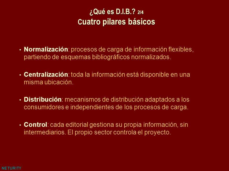 NETURITY ¿Qué es D.I.B.? 2/4 C uatro pilares básicos Normalización: procesos de carga de información flexibles, partiendo de esquemas bibliográficos n